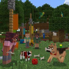 Minecraft : Comment trouver facilement des partenaires de jeu?